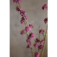 Zijden paarse Pepperberry tak Callicarpa