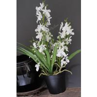 Namaak Orchidee white 48 cm