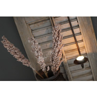 Bos gedroogde Cornus Light pink
