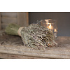 Bos Stargrass naturel 30 cm