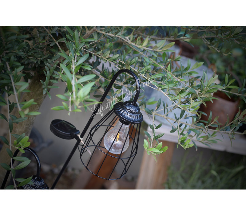 Solar tuinlamp Lantaarn desy Black