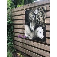 Tuinposter / doek Schaap 100 cm