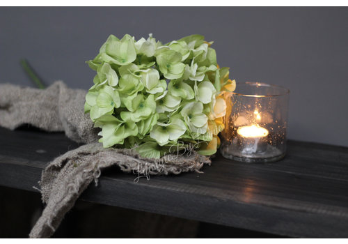 Zijden Hortensia tak Green