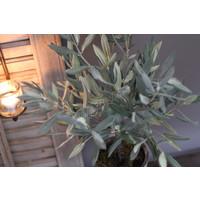 Zijden olijfboom Olive 52 cm