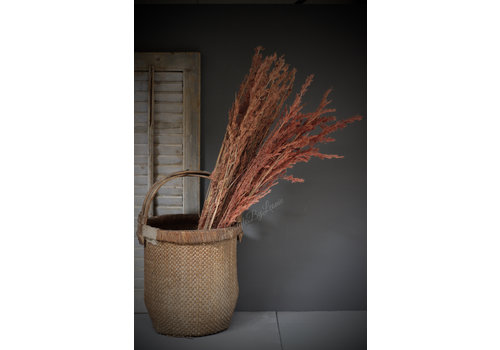 Bos lange gedroogde Alfonso grass 100 cm