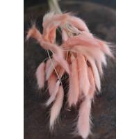Bos gedroogde Konijnenstaart roze
