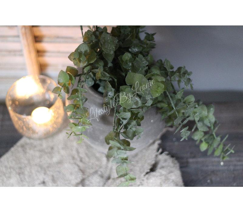 Bosje namaak hangende Eucalyptus