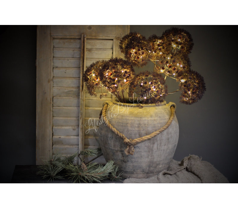 Bereklauw met LED lampjes Brons