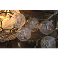 DUTZ kerstbal helder bubbels 8 cm