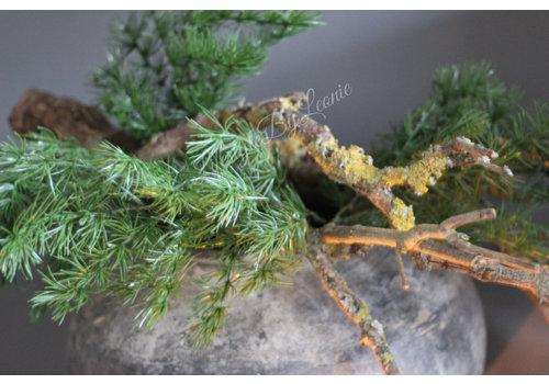 Namaak groene dennentak Picea 69 cm