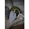 Mijn Stijl Mijn Stijl zeephanger hart XL Herbel grey