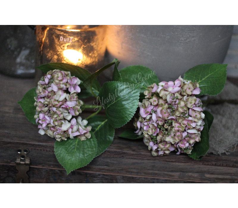 Brynxz zijden Hortensia tak 2 knoppen 80 cm
