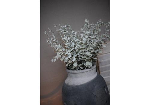 Brynxz Brynxz Eucalyptus tak light grey 73 cm