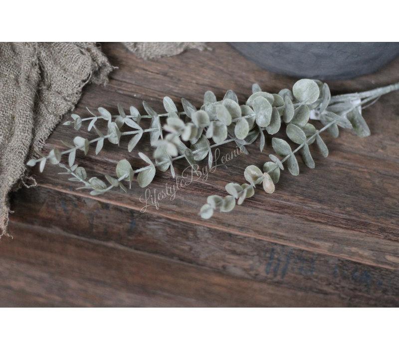 Brynxz Eucalyptus tak light grey 73 cm