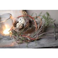 Sober nestje met 2 eitjes en veren
