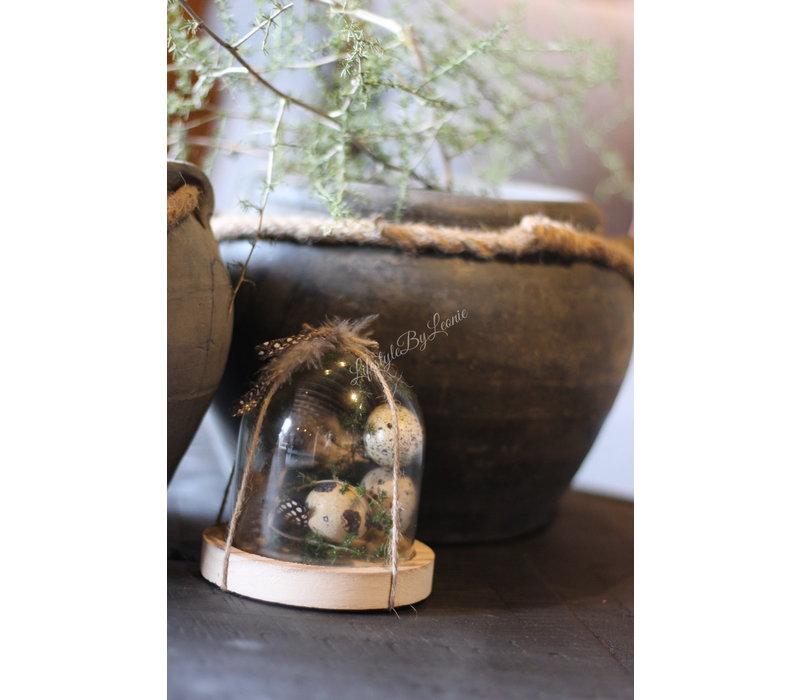 Glazen stolpje met Asparagus en kwarteleitjes 10 cm