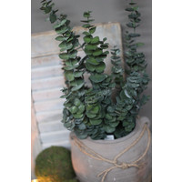Zijden Eucalyptus tak dark green 80 cm