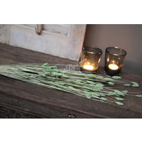 Bos gedroogde Phalaris pastel green