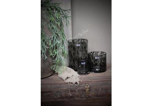 Dutz DUTZ cilinder windlicht Black panter 23 cm
