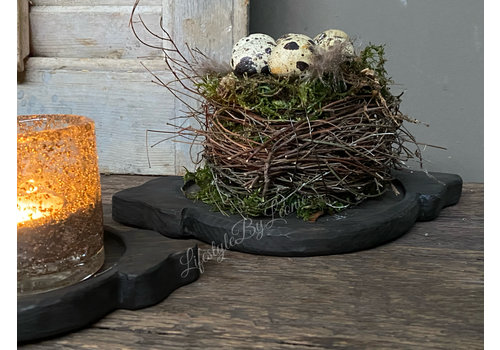 Nestje met mos en kwartelei