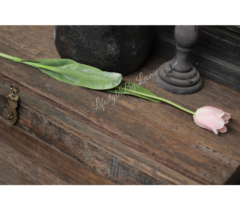 Zijden Franse tulp Pink 62 cm