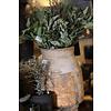 Bos gedroogde Eucalyptus potlood