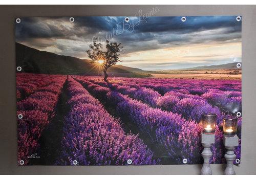 Tuinposter zuid-franse lavendel veld 120cm