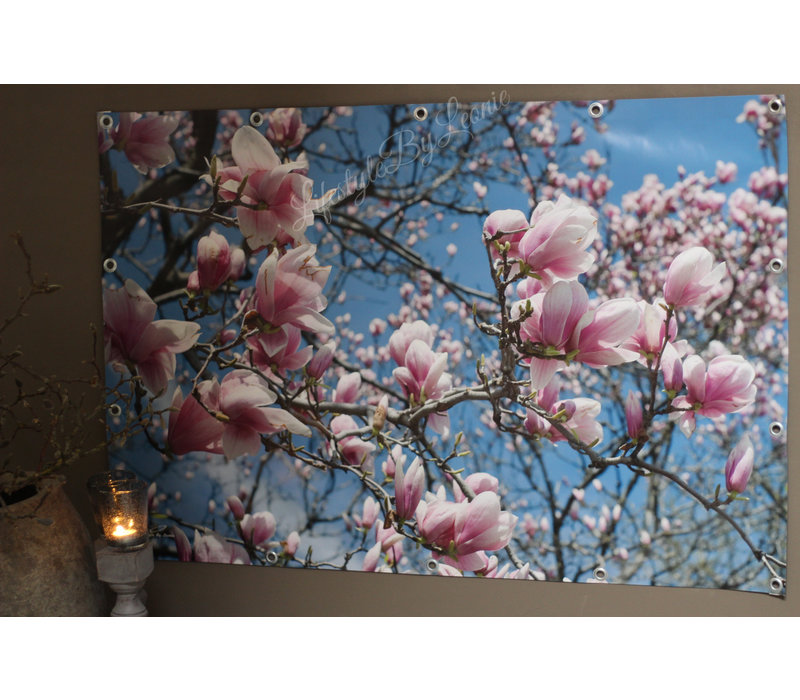 Tuinposter Magnolia boom 120 cm