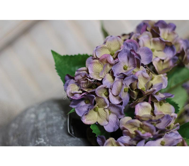 Brynxz Hortensia tak paars groen 49 cm