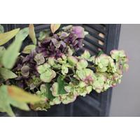 Brynxz zijden Hortensia tak old green 97 cm