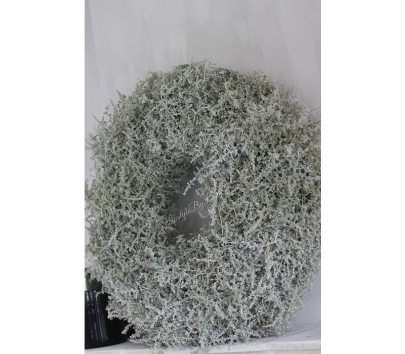 Waxkrans wilde Asparagus olive  70 cm