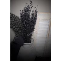 Bos gedroogde zwarte vlas 50 cm