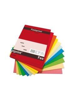 PaperFactory A4 Kopieerpapier Fastprint 80gr gekleurd