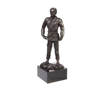 Bronzen beeld Judo