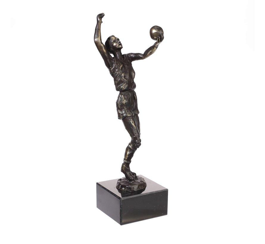 Beeld Volleybal