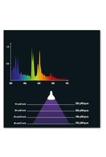 Solar Raptor Solar Raptor HID Spot 50 watt