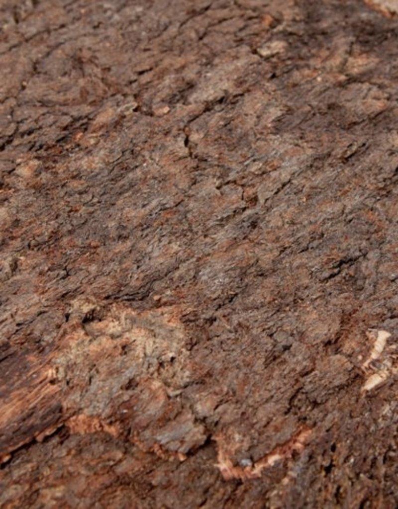 "Terrarium Korkrückwand ""Bark"" 60 x 90 x 2 cm"