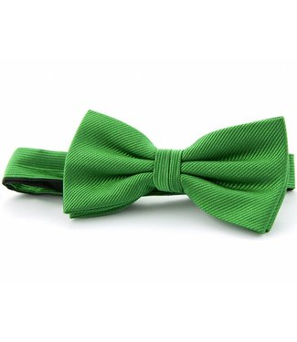Strik Zijde Groen 9120768A