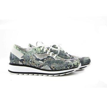 Durea Sneaker Python Groen