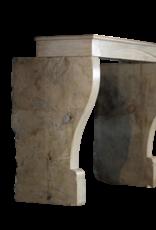 Fina Francesa Regency Con Chimenea De Piedra Caliza Dura Para Los Conceptos Modernos Interiores