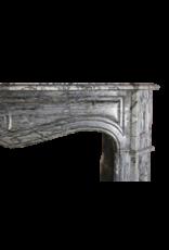 Siglo 19 Clásico De Chimenea Francesa Envolvente