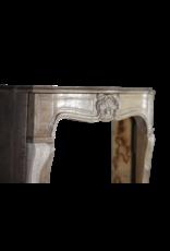 Französisch Des 20. Jahrhunderts Lxv Stil Holz Kamin