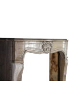 French 20Th Century Lxv Style Wood Surround