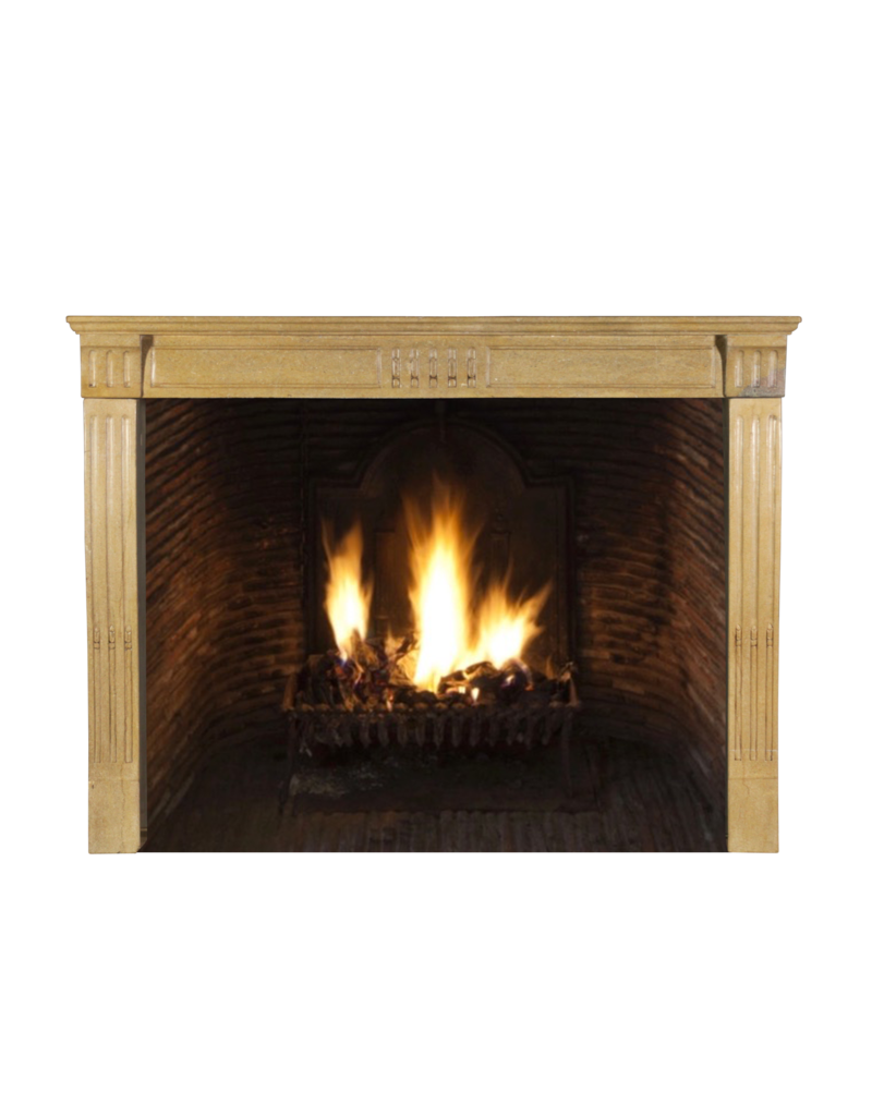 Fine French Classic Fireplace In Bicolour Hard Limestone