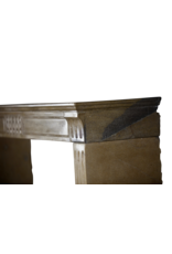 Fina Clásica Francesa Chimenea En Bicolor Duro De Piedra Caliza