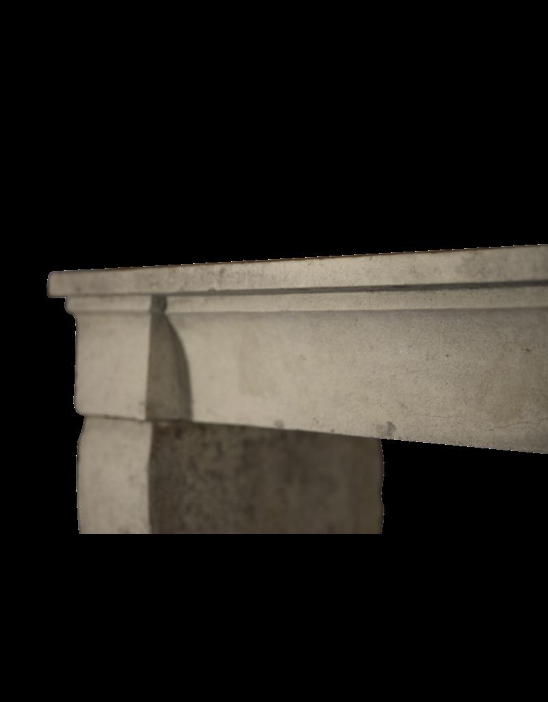 La Piedra Caliza Francés Elegante Chimenea
