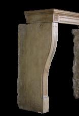 LXVI Francesa Chimenea De Piedra Surround