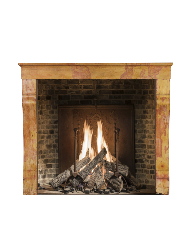The Antique Fireplace Bank Created By Nature French Vintage Surround