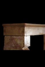 The Antique Fireplace Bank Creado Por La Naturaleza De La Vendimia Francesa Surround