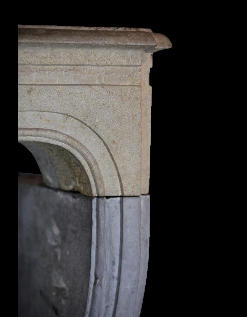 Bicolor LXIV Period French Antique Stone Surround